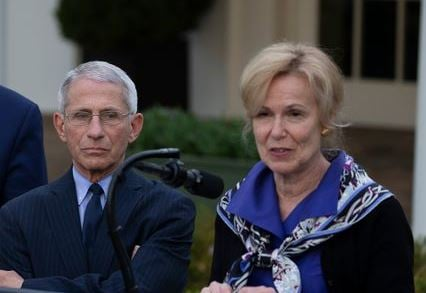 """There Is Nothing from the CDC I Can Trust!"" – Dr. Birx Tells Off CDC Director Fauci-birx-1"